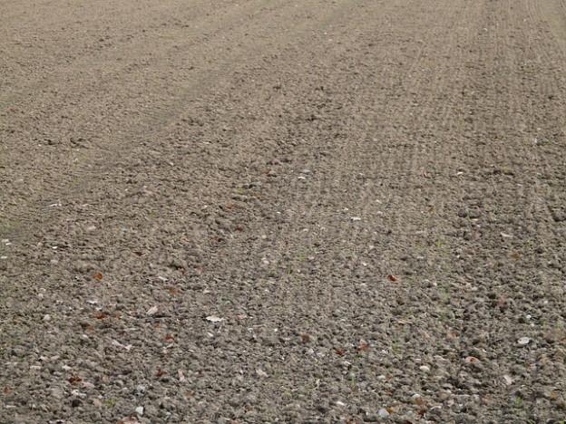 Réaliser une étude de sol : tout ce qu'il faut savoir